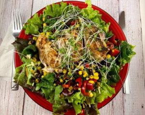 Cilantro Chicken and Black Bean Salad – InstantPot