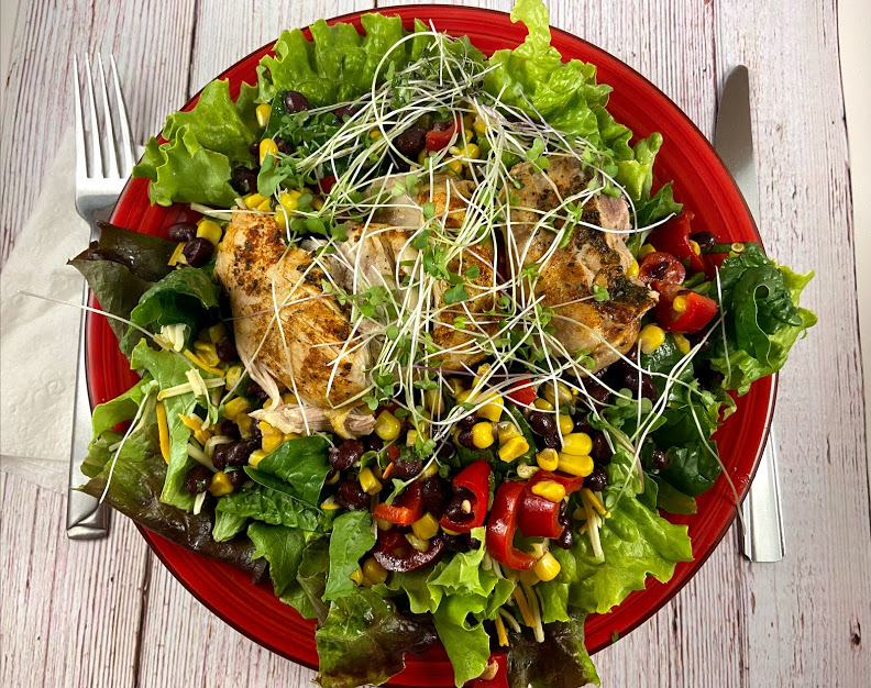 You are currently viewing Cilantro Chicken and Black Bean Salad – InstantPot